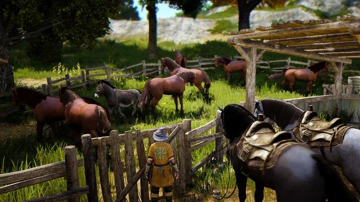 べリア村厩舎にいた驢馬