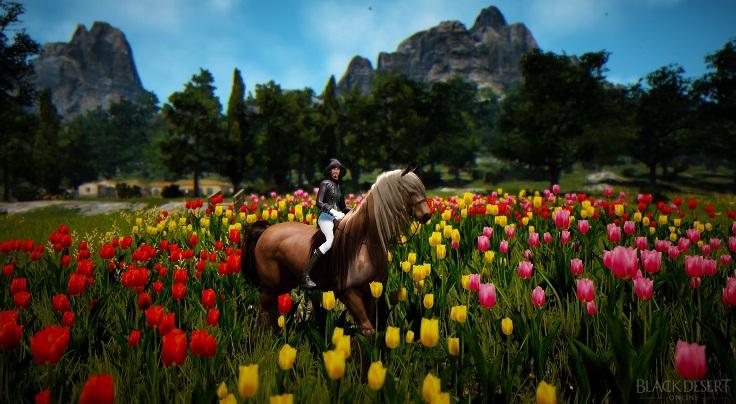 2頭目の馬がスプリントを覚えました。