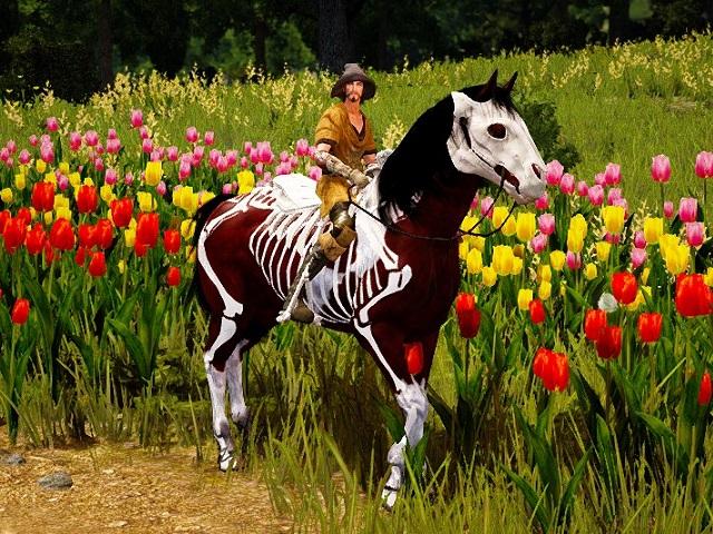 スケルトン馬具を装着した馬