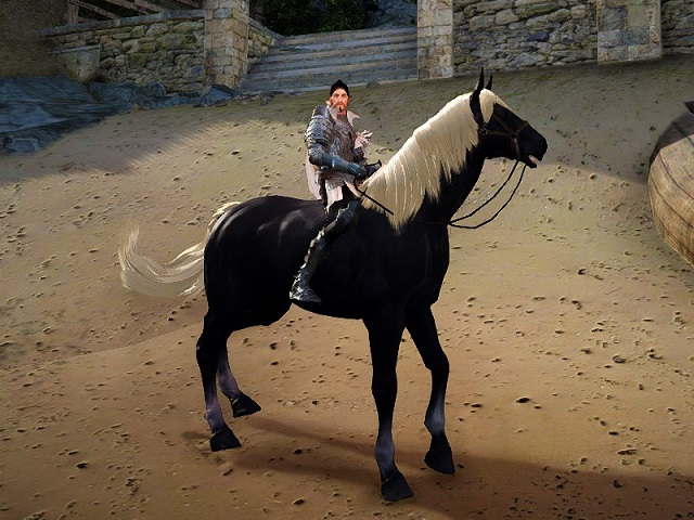 モノトーン柄の5世代馬