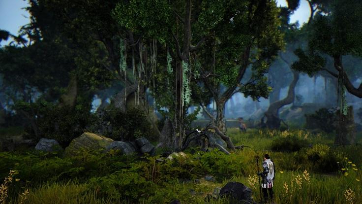ブリの木遺跡