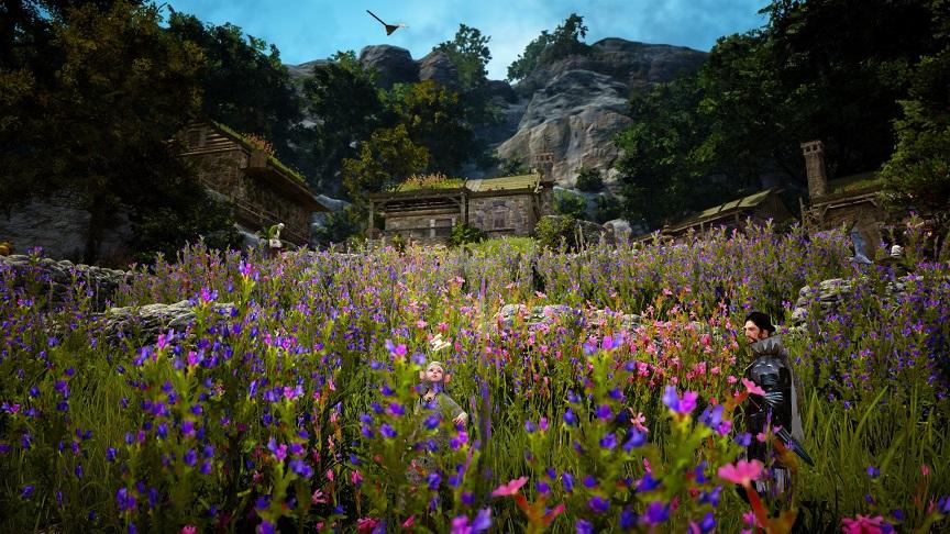 フローリン村の花畑