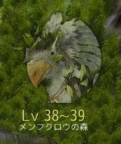 Lv38~39 メンフクロウの森
