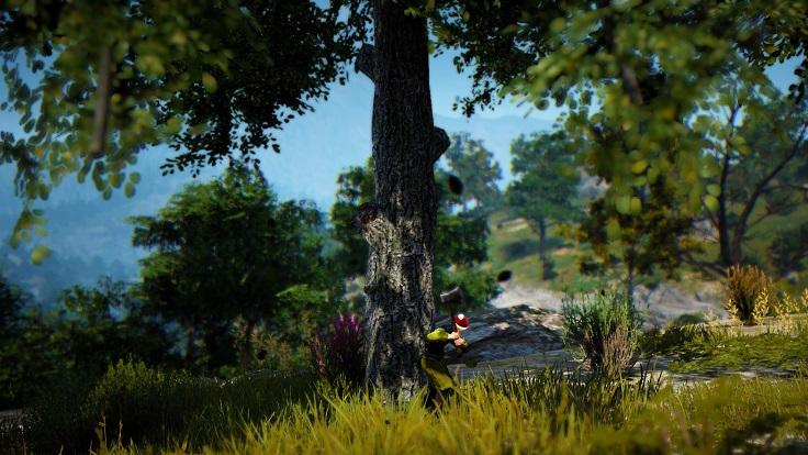 トネリコの原木を採集