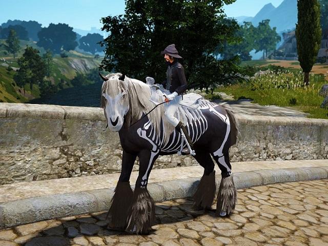 スケルトン馬具を装着した4世代馬